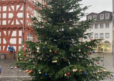 Kirchhain: Weihnachtsbaum der Hoffnung